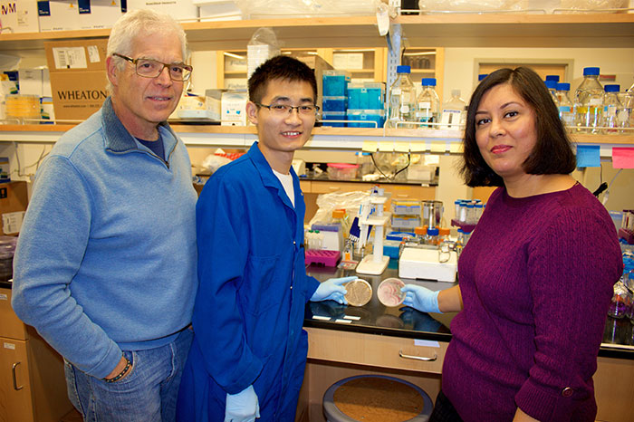 UCLA nanoscientists develop safer, faster way to remove pollutants from water