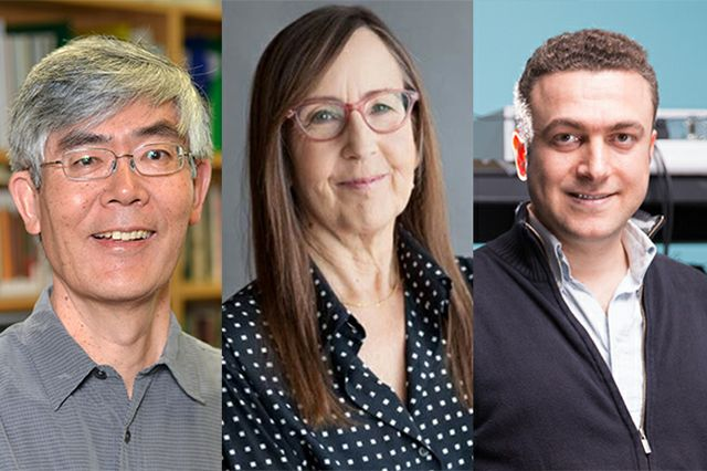 Three UCLA faculty members awarded 2017 Guggenheim Fellowships