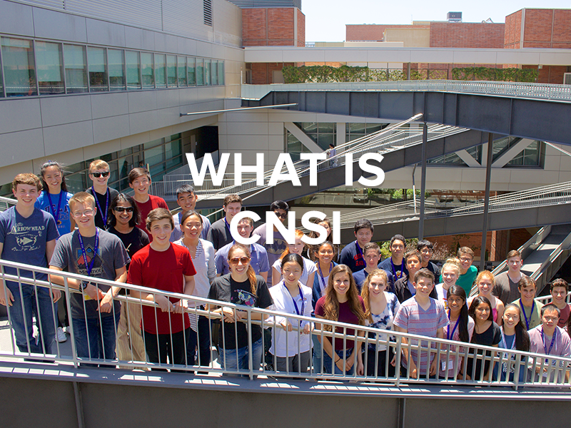 What is CNSI