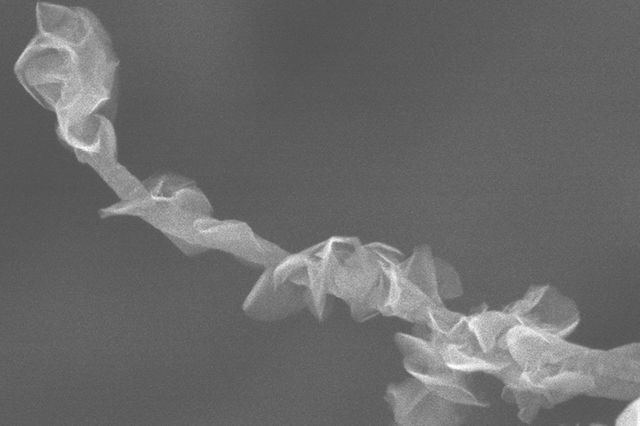 February 23, 2018 | Inspired by nature: Design for new electrode could boost supercapacitors' performance