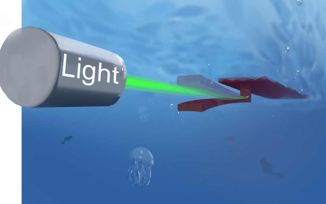 September 9, 2019 | Soft-bodied swimming robot uses only light for power and steering