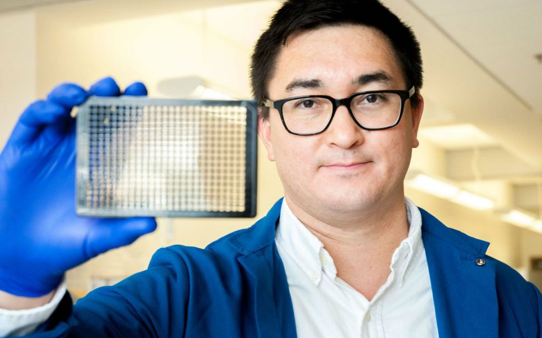 September 11, 2019 | UCLA-led research reveals potential treatments for deadly tropical disease