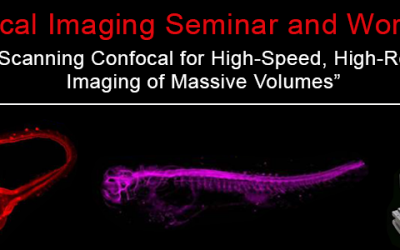 September 17, 2019 | Confocal imaging seminar and workshop