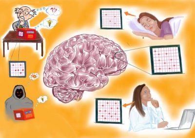 January 13, 2020   Brain-like device may forecast future of computer technology