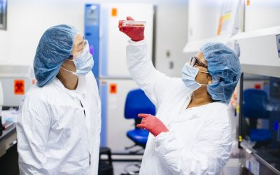 August 20, 2020 | How UCLA scientists are using stem cells to take on COVID-19