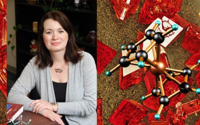 August 3, 2020 | Chemist Paula Diaconescu to lead new NSF Center for Integrated Catalysis