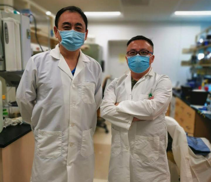 UCR Researchers Jikui Song and Rong Hai