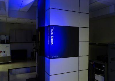 December 7, 2020 | New electron-detecting camera speeds up bio-imaging