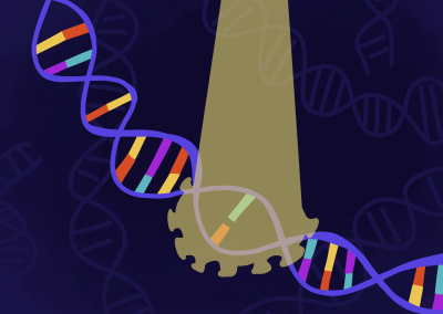 November 20, 2020 | UCLA researchers study link between genetics and reaction to COVID-19