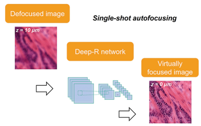 January 22, 2021 | Autofocusing of microscopy images using deep learning