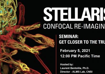 STELLARIS: Confocal Re-Imagined