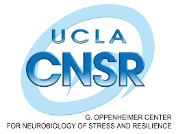 Post-Doctoral Research Fellow – Center For Neurobiology of Stress and Resilience University of California, Los Angeles