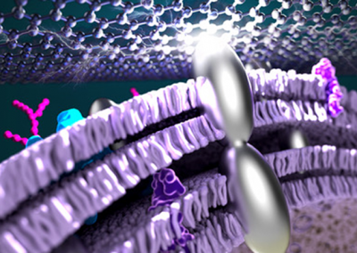 September 16, 2021 | Researchers Infuse Bacteria with Silver to Improve Power Efficiency in Fuel Cells